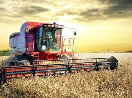 Bezpieczeństwo żywności w łańcuchu dostaw
