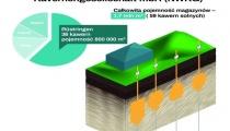 Transition Technologies dostarczy oprogramowanie zarządzające niemieckimi zapasami ropy naftowej