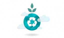 Zielone opakowania dla e-commerce – przegląd dostępnych rozwiązań