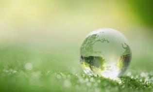 100% kompensata emisji dwutlenku węgla w transportach drobnicowych w CEVA Logistics