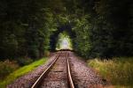 PKP Intercity na drodze do neutralności klimatycznej