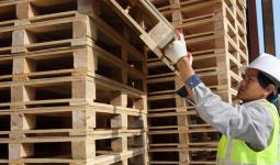 Wariantowy projekt usprawnienia systemu gospodarki paletami dla operatora logistycznego